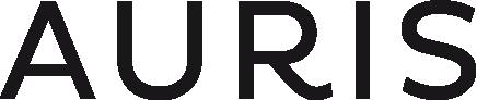 Auris Művészeti Ügynökség